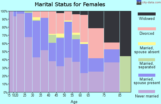 Zip code 22206 marital status for females