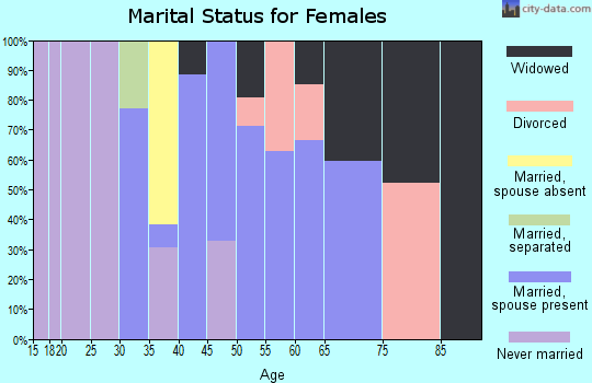 Zip code 22460 marital status for females