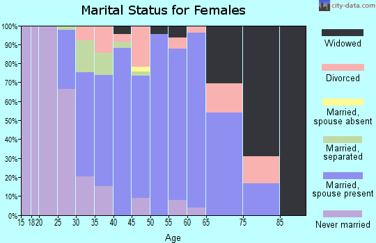 Zip code 23141 marital status for females