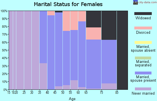 Zip code 23146 marital status for females