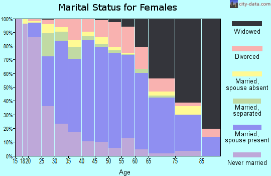 Zip code 23323 marital status for females