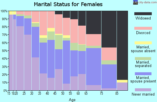 Zip code 23324 marital status for females