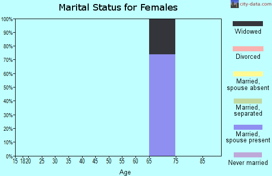Zip code 23395 marital status for females