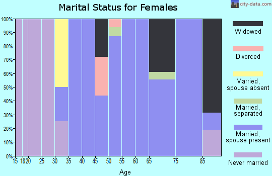 Zip code 23418 marital status for females