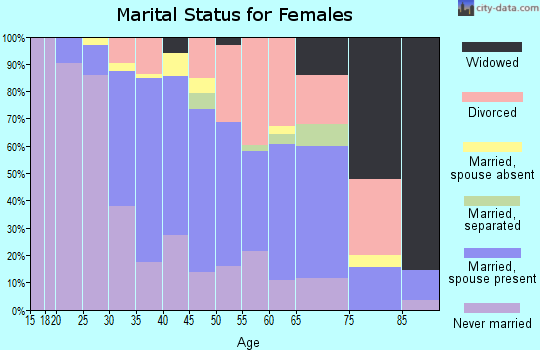 Zip code 23507 marital status for females