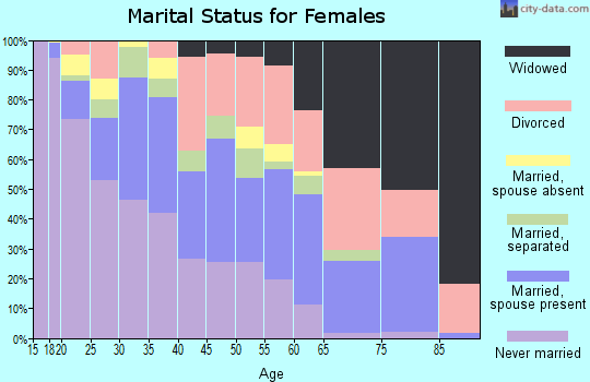 Zip code 23513 marital status for females