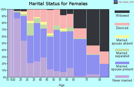 Zip code 23606 marital status for females
