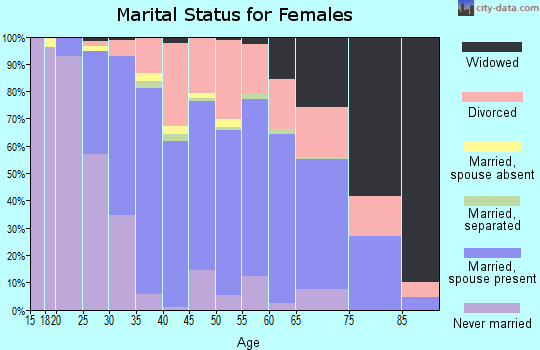 Zip code 24019 marital status for females