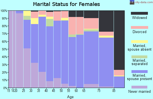 Zip code 24060 marital status for females