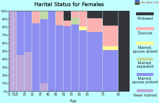 Zip code 24064 marital status for females