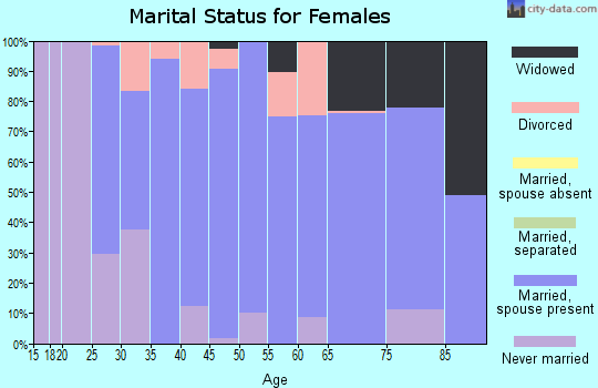 Zip code 24065 marital status for females