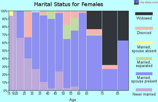 Zip code 24090 marital status for females