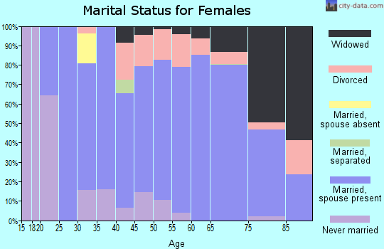 Zip code 24121 marital status for females