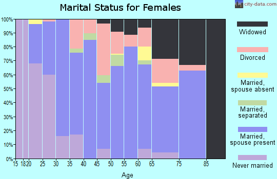 Zip code 24124 marital status for females