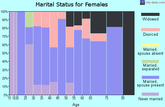 Zip code 24128 marital status for females