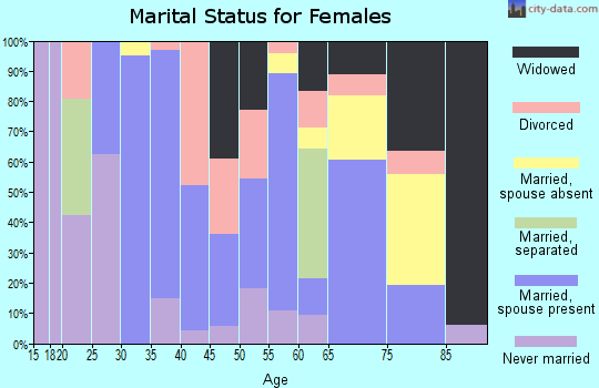 Zip code 24147 marital status for females