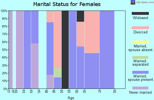 Zip code 24150 marital status for females