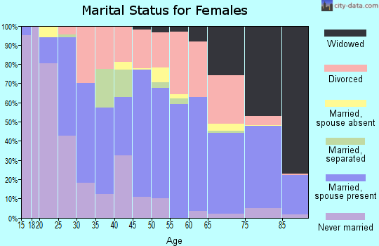 Zip code 24210 marital status for females