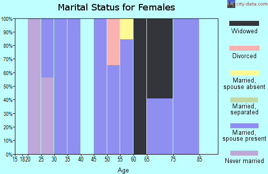 Zip code 24220 marital status for females