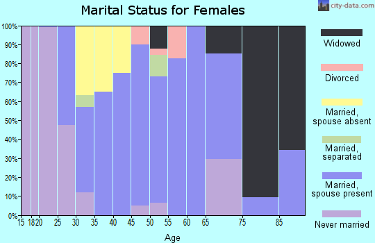 Zip code 24225 marital status for females