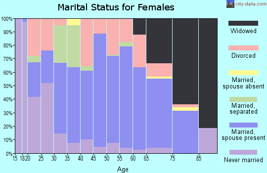 Zip code 24228 marital status for females