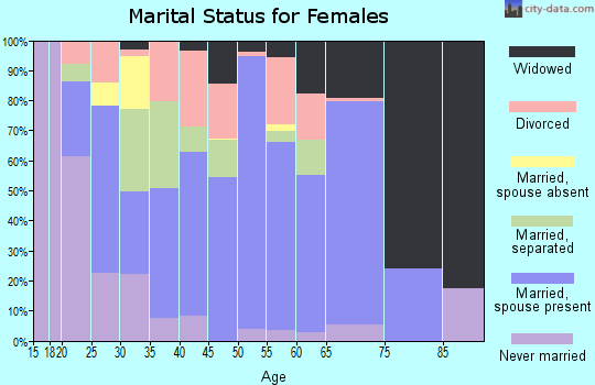 Zip code 24230 marital status for females