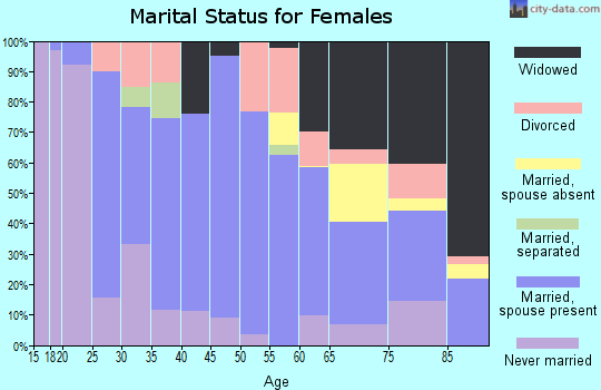 Zip code 24266 marital status for females