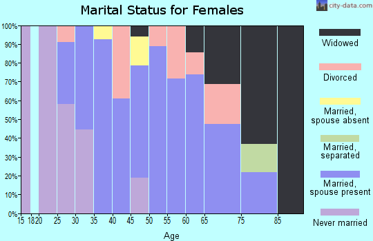 Zip code 24281 marital status for females