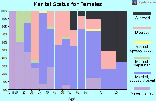 Zip code 24290 marital status for females