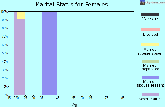Zip code 24327 marital status for females