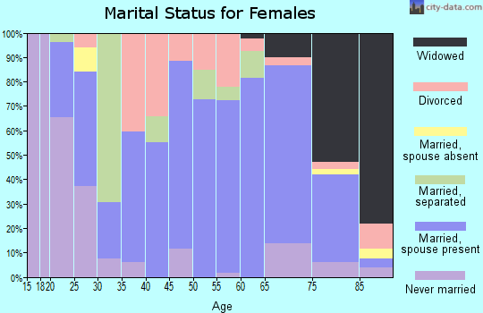 Zip code 24348 marital status for females