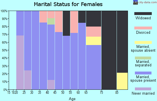 Zip code 24380 marital status for females