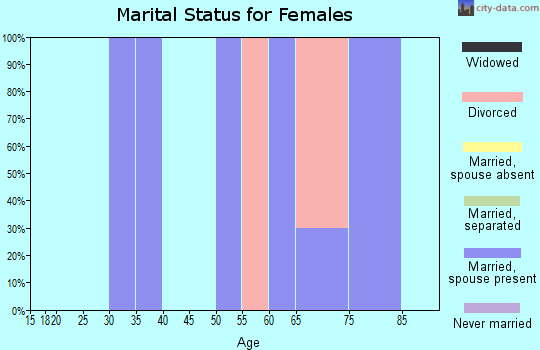 Zip code 24464 marital status for females