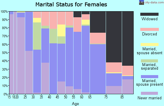 Zip code 24522 marital status for females
