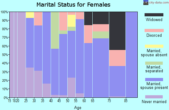 Zip code 24538 marital status for females