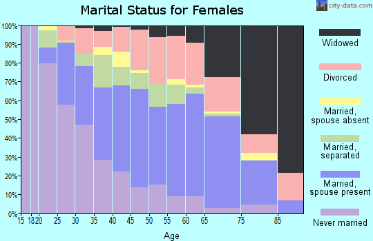 Zip code 24541 marital status for females