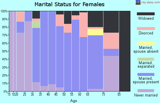 Zip code 24555 marital status for females