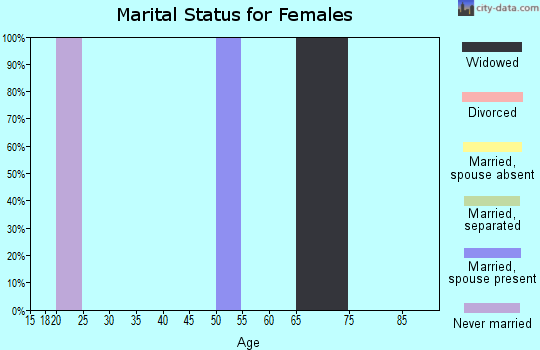Zip code 24601 marital status for females