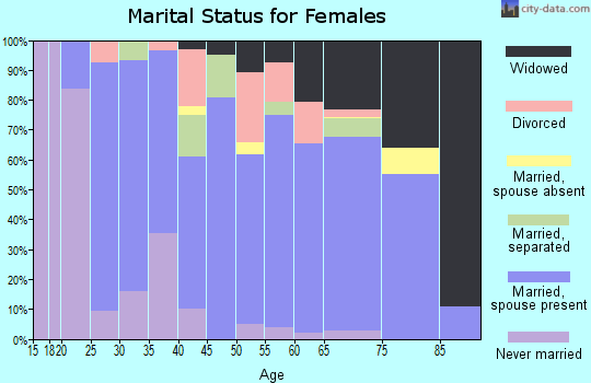 Zip code 24605 marital status for females