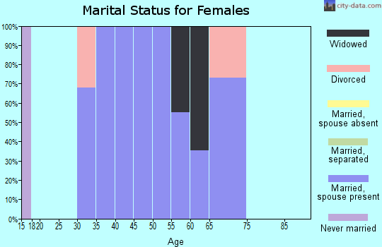 Zip code 24646 marital status for females