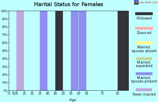 Zip code 24716 marital status for females