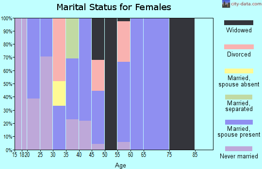 Zip code 24808 marital status for females