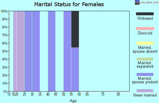 Zip code 24849 marital status for females