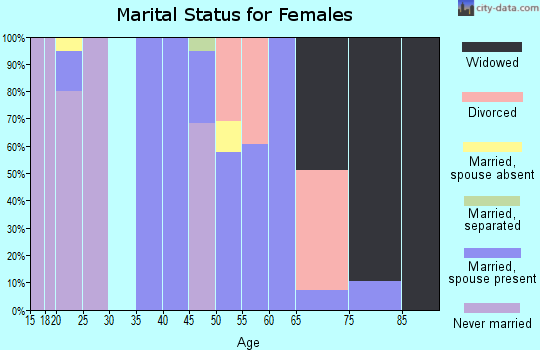 Zip code 24853 marital status for females