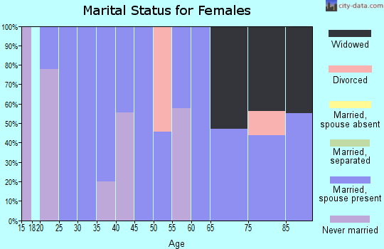 Zip code 24938 marital status for females