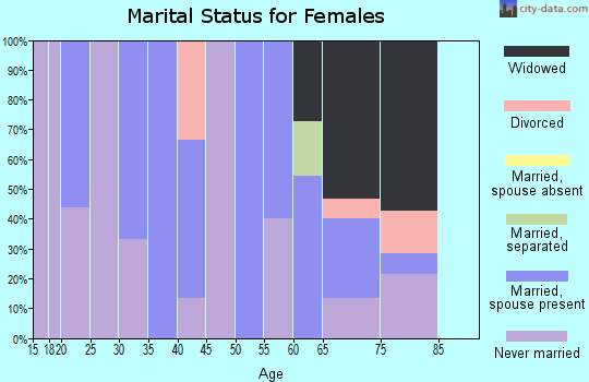 Zip code 25102 marital status for females