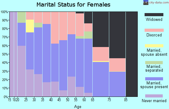 Zip code 25143 marital status for females