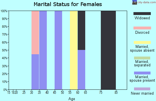 Zip code 25161 marital status for females