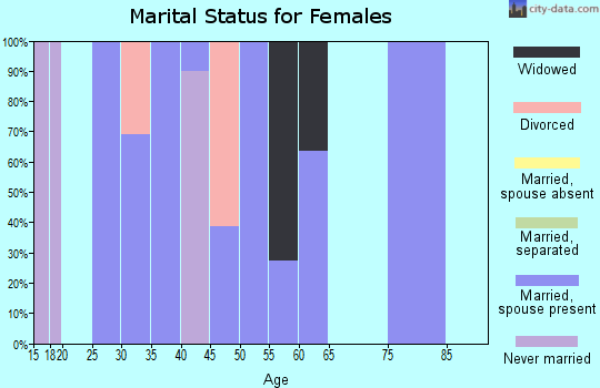 Zip code 25259 marital status for females