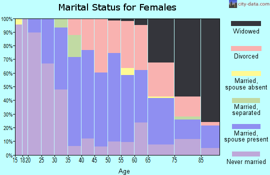 Zip code 25304 marital status for females